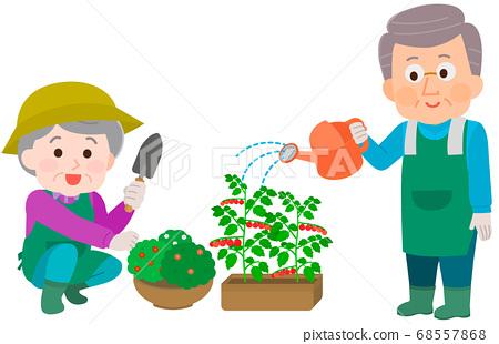 텃밭 정원을하는 노인 남녀 일러스트 68557868