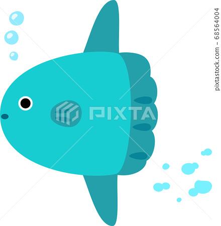 Sunfish swimming underwater 68564004