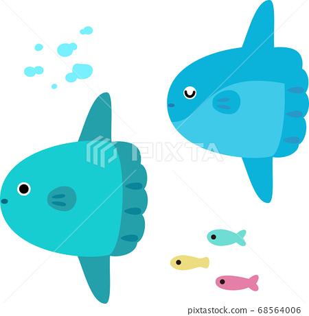 兩隻翻車魚水下游泳 68564006