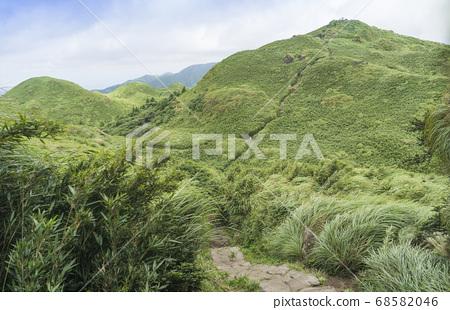 Qixing East Peak는 주요 봉우리를 내려다보고 있습니다. 68582046