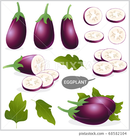 Set of purple eggplant in various style, vector 68582104