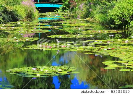 [고치 현] 수련이 피는 모네의 정원 연못 68583819