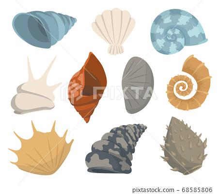 Colorful tropical sea shells underwater icon collection. Marine set cute stickers on the white background. Vector illustration. Perfect for invitations, greeting cards posters banners and flyer 68585806