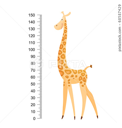 Funny giraffe. Cheerful funny giraffe with long neck. Giraffe meter wall or height chart or wall sticker. Illustration with scale from 2 to 150 centimeter to measure growth 68587429