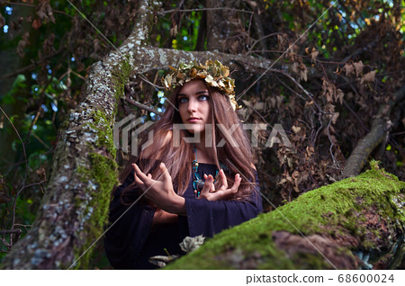 witch in dark forest 68600024