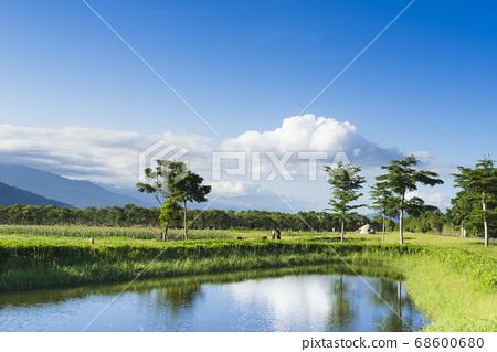花東縱谷大農大富平地森林公園 68600680