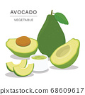 Set of Avocado Fruit Slices. Organic and healthy food isolated element Vector illustration. 68609617