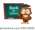 Cute wise owl. Funny owl, back to school concept 68619685