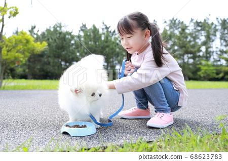 公園裡的女孩和她的狗博美犬散步 68623783