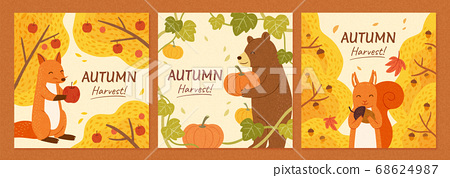 Autumn harvest banner set 68624987