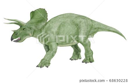 三角龍,白堊紀晚期的角龍,雜食。它有三個角落。 68630228