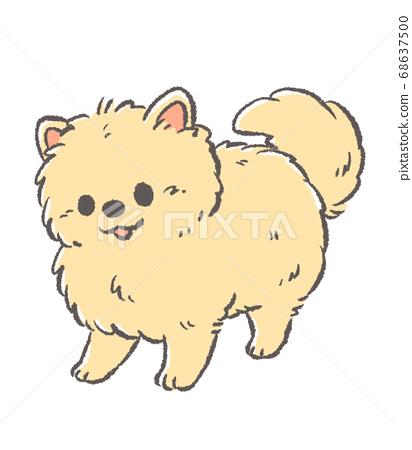 博美犬凝視的插圖 68637500