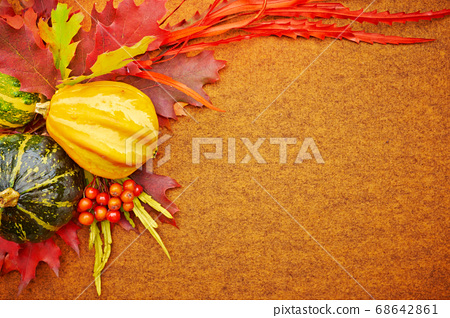 Harvested pumpkins with fall leaves, autumn 68642861