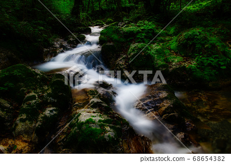 A watercourse in a small valley in the woods 68654382