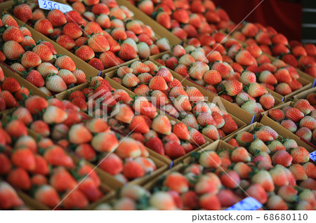 straw berry market in chiang mai fruit market 68680110
