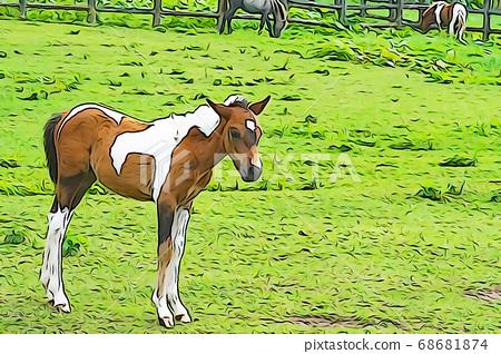 One cute pony 68681874