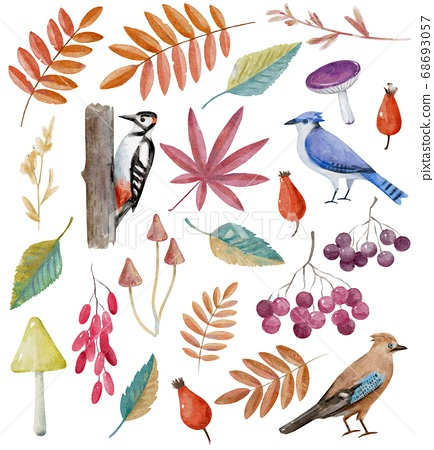 Big collection of watercolor autumn clip art. 68693057