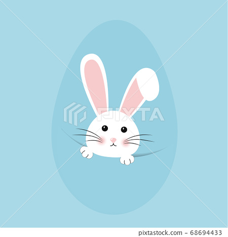 Easter rabbit, easter Bunny. Vector illustration. 68694433