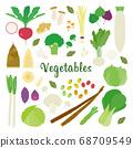 蔬菜矢量插圖集 68709549