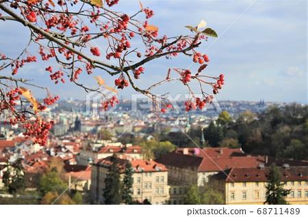 从布拉格,捷克共和国,欧洲的山丘上查看 68711489