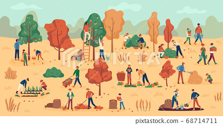 Harvest season. Farmers on plantation collecting fruits, vegetables and berries. Stacking hay, agricultural autumn work vector background 68714711