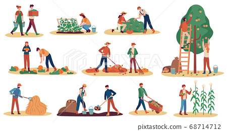 Autumn harvest. Farm workers gathering crops ripe vegetables, picking fruits and berries, remove leaves, season agriculture vector set 68714712