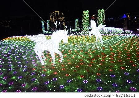 飛馬的照明 68716311