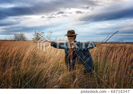 The scarecrow in the wheat field 68718347