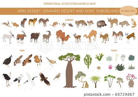 Desert biome, xeric shrubland biome, natural 68729867