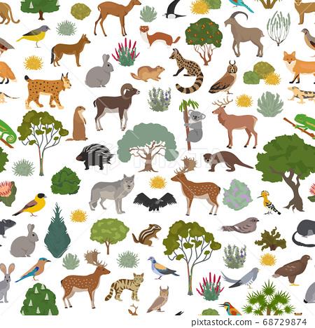 Mediterranean vegetation biome, natural region 68729874