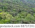 숲,남산,용산구,서울시 68737201