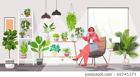 woman taking care of houseplants living room or home garden interior 68745175