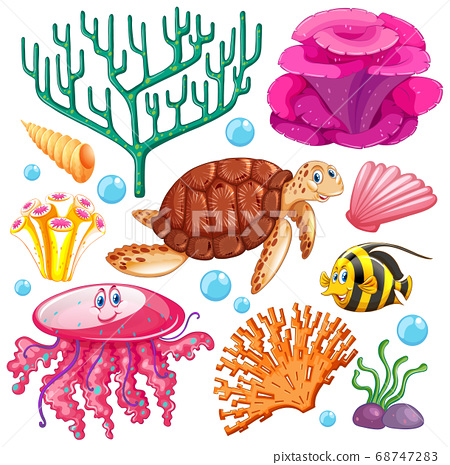 Set of sea creatures on white background 68747283