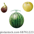 Fig_pear_watermelon_real插圖 68761223