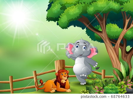 Happy elephant and lion in the jungle 68764633