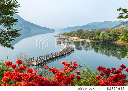 春天的大清湖 68771911