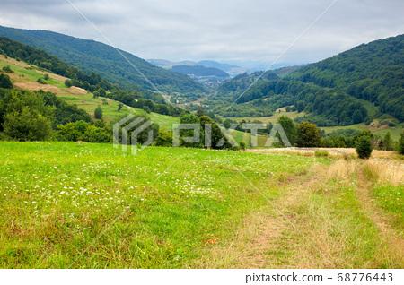 country road through rural field. suburban summer 68776443