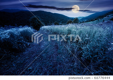 country road through rural field at night. 68776444