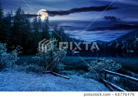 scenery around the lake in mountains at night. 68776476
