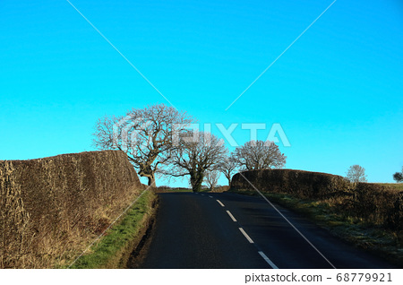 Country Road in Winter in Scotland 68779921