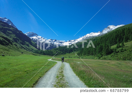 Dirt road in the high mountains by mountain bike 68788799