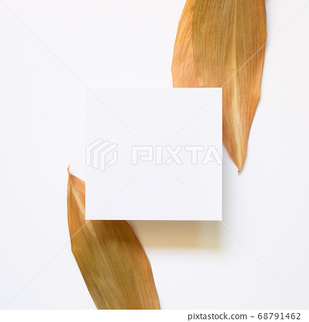 Blank empty paper with dry autumn leaves on white background. top view, copy space 68791462