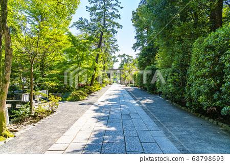 [가나가와 현] 가마쿠라 여름 쓰루 오카 하치만 구 68798693