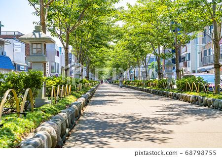 [가나가와 현] 가마쿠라 여름 녹색이 예쁜 쓰루 오카 하치만 段葛 68798755