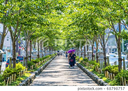 [가나가와 현] 가마쿠라 여름 녹색이 예쁜 쓰루 오카 하치만 段葛 68798757
