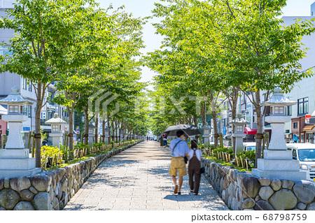 [가나가와 현] 가마쿠라 여름 녹색이 예쁜 쓰루 오카 하치만 段葛 68798759
