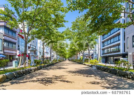 [가나가와 현] 가마쿠라 여름 녹색이 예쁜 쓰루 오카 하치만 段葛 68798761