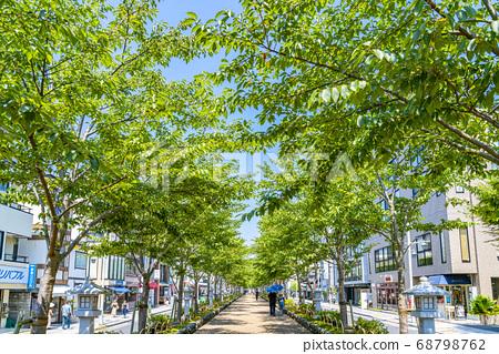 [가나가와 현] 가마쿠라 여름 녹색이 예쁜 쓰루 오카 하치만 段葛 68798762