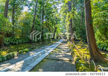 [가나가와 현] 가마쿠라 녹색이 우거진 寿福寺의 참배 길 68799813