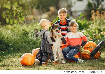 Cute childresn sitting on a garden near many pumpkins 68807054